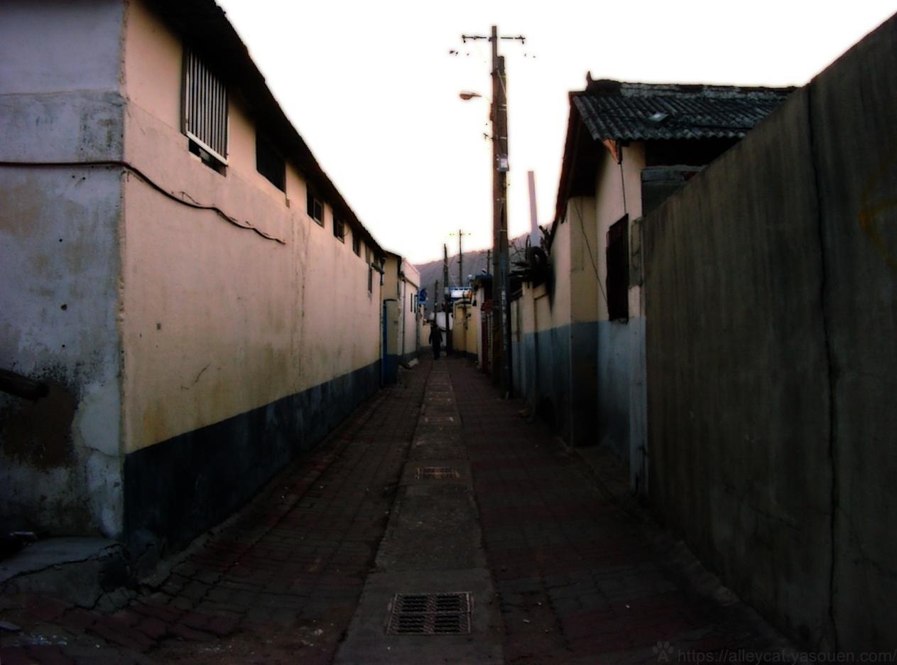 Gyeongju, Korea, 2006